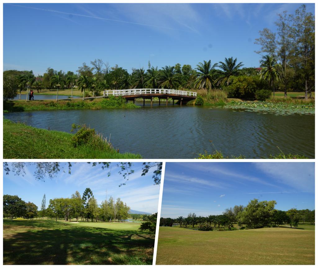collage Golf court 2